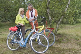 One Million e-Bikes on Dutch Roads
