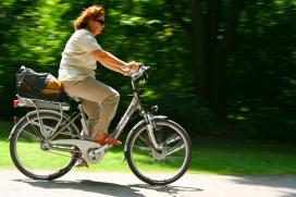 E-Bike Sales Up in Depressed 2013 German Market