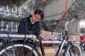 Multi Million Chinese E-Bike Maker Enters Europe