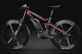 E-MTB's Are Sales Hit; Says Accell Group