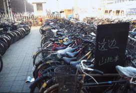 Database to Monitor Bicycle Thieves in Beijing