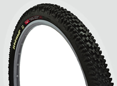 WTB TCS Tubeless and Low Weight