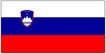 <b>Slovenia 2010:</b> Solid Year with Hopes for Better 2011