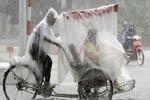 荷蘭自行車/電動車因多雨夏季銷售下跌雙位數
