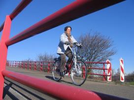 荷蘭自行車的使用成長