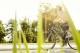 Bike europe speed e bike helmets photo bosch 16 4 80x53