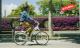 Bike europe gi fly bike 1 80x48
