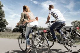 Work on World E-Bike Standard; Plea for Higher Speed