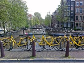 E-Bike Puts Dutch Market Back on Growth Track