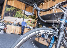 Is Sales of Regular Bikes Finally Stabilizing?