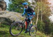 Giant and Merida Report High E-Bike Sales Boosting Revenues