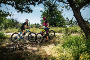 Which mountain bike fits you better?