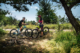 Devron europe mountain bike 80x53