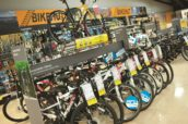 Despite Poor Summer Weather and Brexit Effect Halfords Cycle Sales Rebound